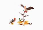 playmobil-vautours